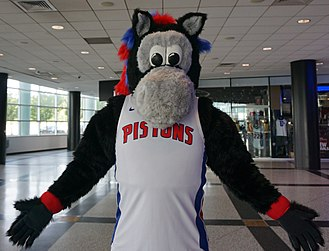 Mascot - Hooper is the mascot for the Detroit Pistons National Basketball Association team.