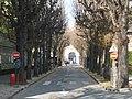 Hopital Sainte Anne autre vue 7.jpg