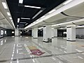 Houhu Boulevard Station 2018-01-17 (2).jpg