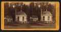 House on Stump, 36 feet in diameter, by John P. Soule.png