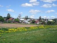 Houses in village Blizhnee Borisovo.jpg