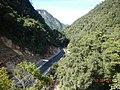 Hutan Lindung Kelok Sembilan - panoramio.jpg