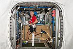 ISS-53 Mark Vande Hei exercises on COLBERT T2 Treadmill.jpg
