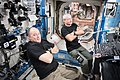 ISS-54 Scott Tingle and Mark Vande Hei relax in the Destiny lab.jpg