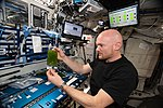 ISS-56 Alexander Gerst works in the Harmony module (3).jpg