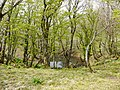 Ibarakawacho, Higashiomi, Shiga Prefecture 527-0216, Japan - panoramio (6).jpg