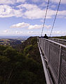 Illawarra Fly Cantilever.jpg