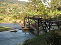 Improvised Bridge, Madagascar1.jpg