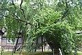 Inabu Zuiryo-ji Temple ac (2).jpg