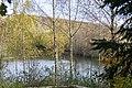 Inselsee auf der Sophienhöhe-1312.jpg