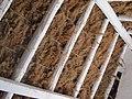 Intérieur Cabane de gardian Pont de Rousty.jpg