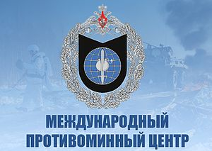 International Mine Action Center Logo.jpg