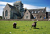 Iona Abbey 12.jpg