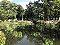 Iris Pond of Kashii Shrine 4.jpg