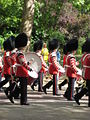 Irish Guards Band Drummers.jpg
