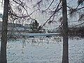 Irkutsk. Akademgorodok. February 2013 - panoramio (129).jpg