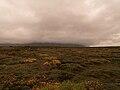 Islande 21.jpg