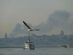 Istanbul 1000277 Nevit.jpg