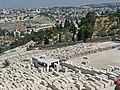 Jerusalem 2012 n240.jpg