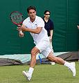 Jesse Huta Galung 4, 2015 Wimbledon Qualifying - Diliff.jpg