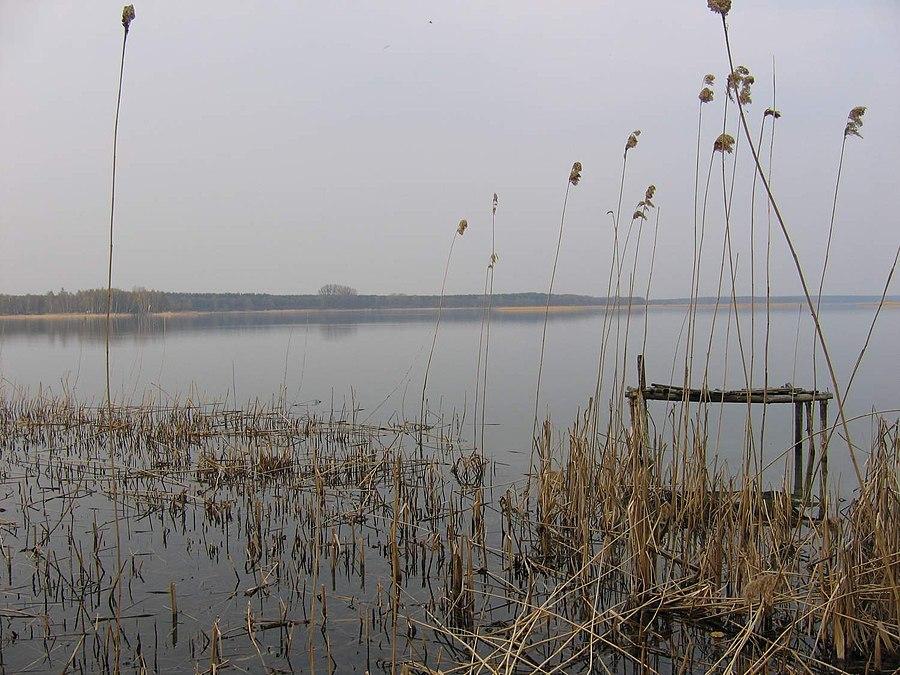 Powidz Landscape Park