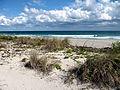 John U. Lloyd Beach State Park, Florida.JPG
