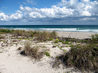 Dr. Von D. Mizell-Eula Johnson State Park - John U. Lloyd Beach State Park, Florida.