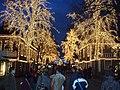 Jul på Liseberg 2006 01.JPG