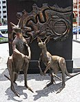 Kangaroos (30992089751).jpg