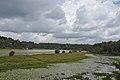 Karamana River 2.jpg