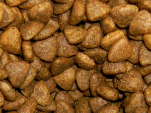 Cat food - Dry (extruded) cat food example