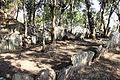 Kawtchhuah Ropui Vangchhia Mapuia Hnamte (1).JPG