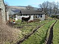 Kilcreggan- Barremman, Gare Loch Forestry Track - geograph.org.uk - 338826.jpg