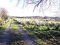 Kiltyclogher Townland - geograph.org.uk - 1119054.jpg