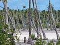 Kiribati 2009. Photo- AusAID (10706713294).jpg