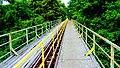 Koronowo - widok mostu kolei wąskotorowej. - panoramio (7).jpg