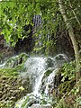 Krushuna waterfalls 059.jpg