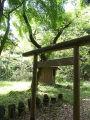 Kurokawa 06b6299s.jpg