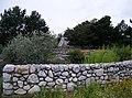 Kurpark Oberlaa (13) (4125586786).jpg