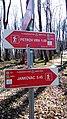 Kutjevo, Croatia - panoramio (5).jpg
