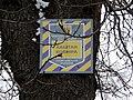 Kyiv-Kovnir's Aesculus-board.jpg