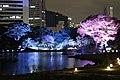 Kyu Shiba-rikyu Gardens 20181124-9.jpg