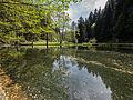 LSG Thüringer Wald Teiche an der Talmühle Wickersdorf 2 DE-TH.jpg