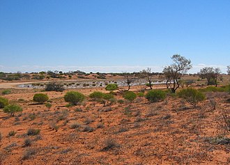 The Rover (2014 film) - Filming took place at Marree.