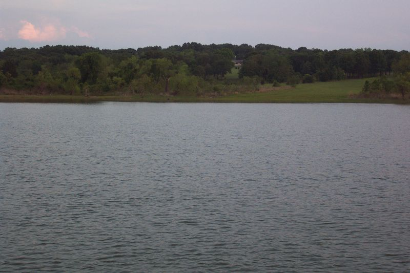 Lake Texoma with green trees, an open meadow, and clouds in sky at twilight.