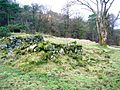 Langbank Farm ruins - general view.JPG