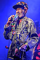 Lee Scratch Perry 2016 (13 von 13).jpg