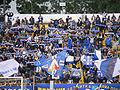 Levski sofia fans.jpg