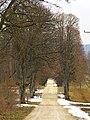 Linden - panoramio.jpg