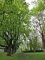 Lindener Volkspark - Hannover Linden-Süd Am Lindener Volkspark - panoramio (2).jpg